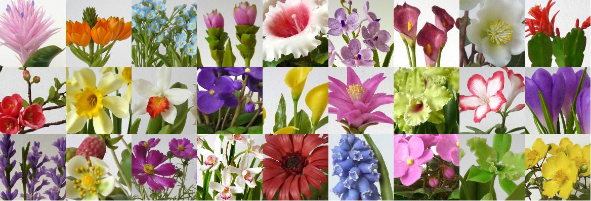 Csodavirágról