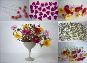 Porcsinrózsa - Portulaca grandiflora